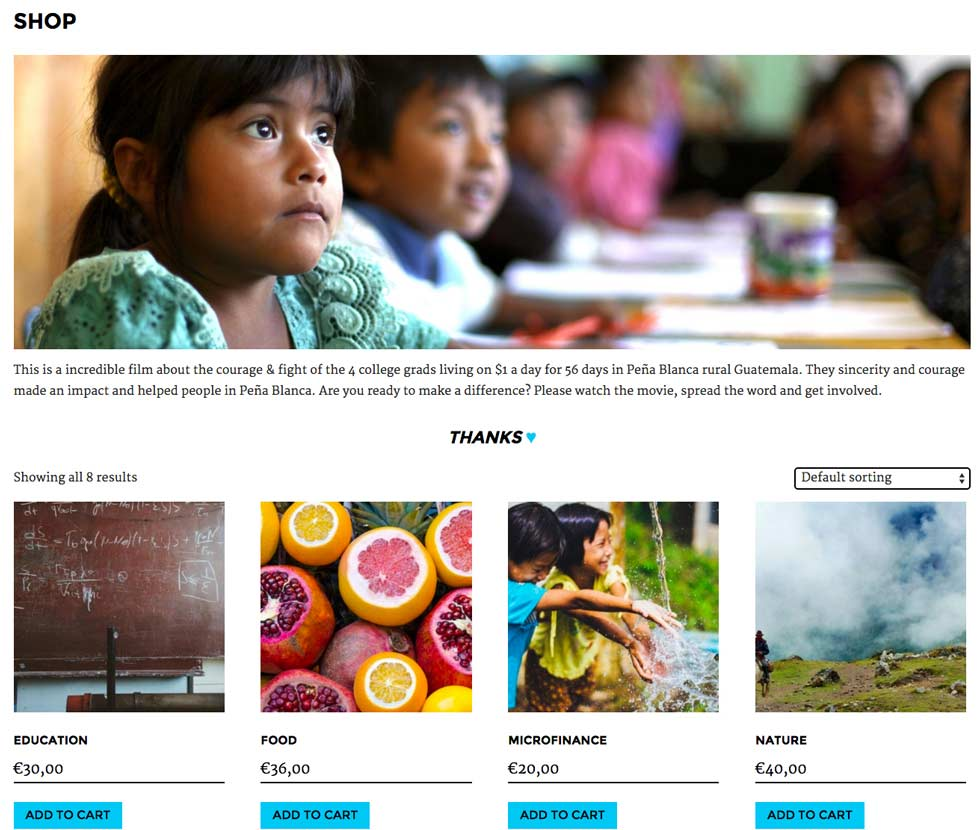Selling charity products with WooCommerce. This is a screenshot from Pena, our NGO website template.