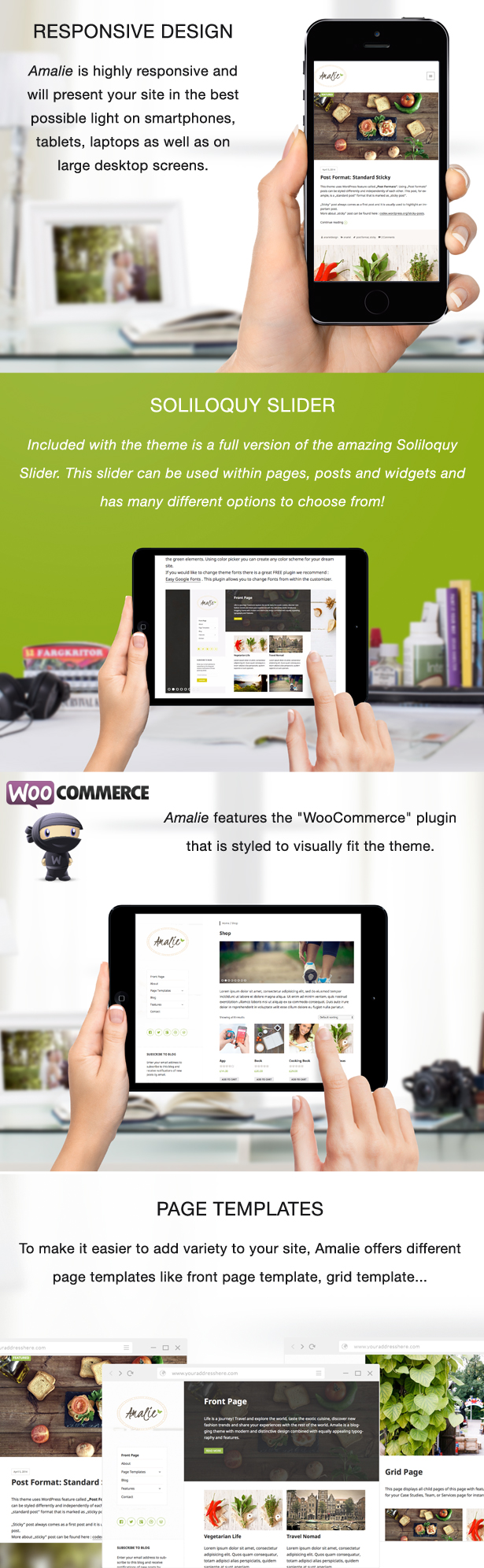 WordPress theme Amalie - Modern Blogging WordPress Theme (Personal)