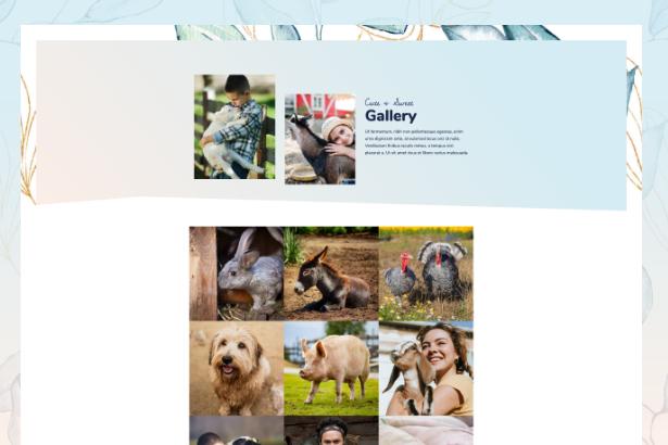 sanctuary-gallery Animal Sanctuary - Non-Profit Template Kit theme WordPress