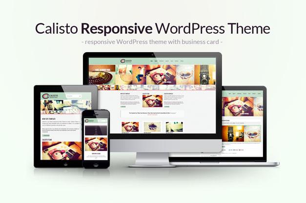 Calisto – New WordPress Theme