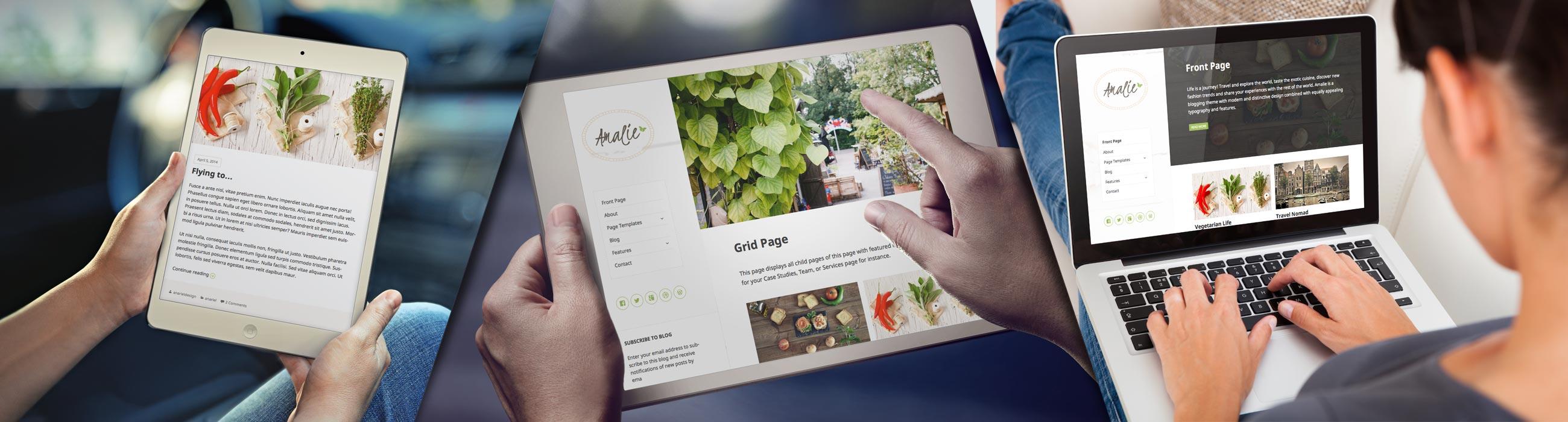 amalie-big-blog-wordpress-theme