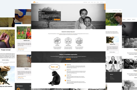Non-Profit WordPress Theme