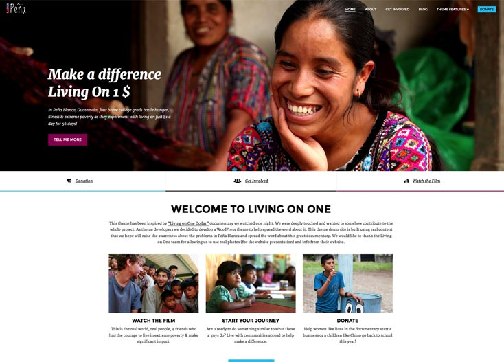 Charity and Non-Profit WordPress Theme