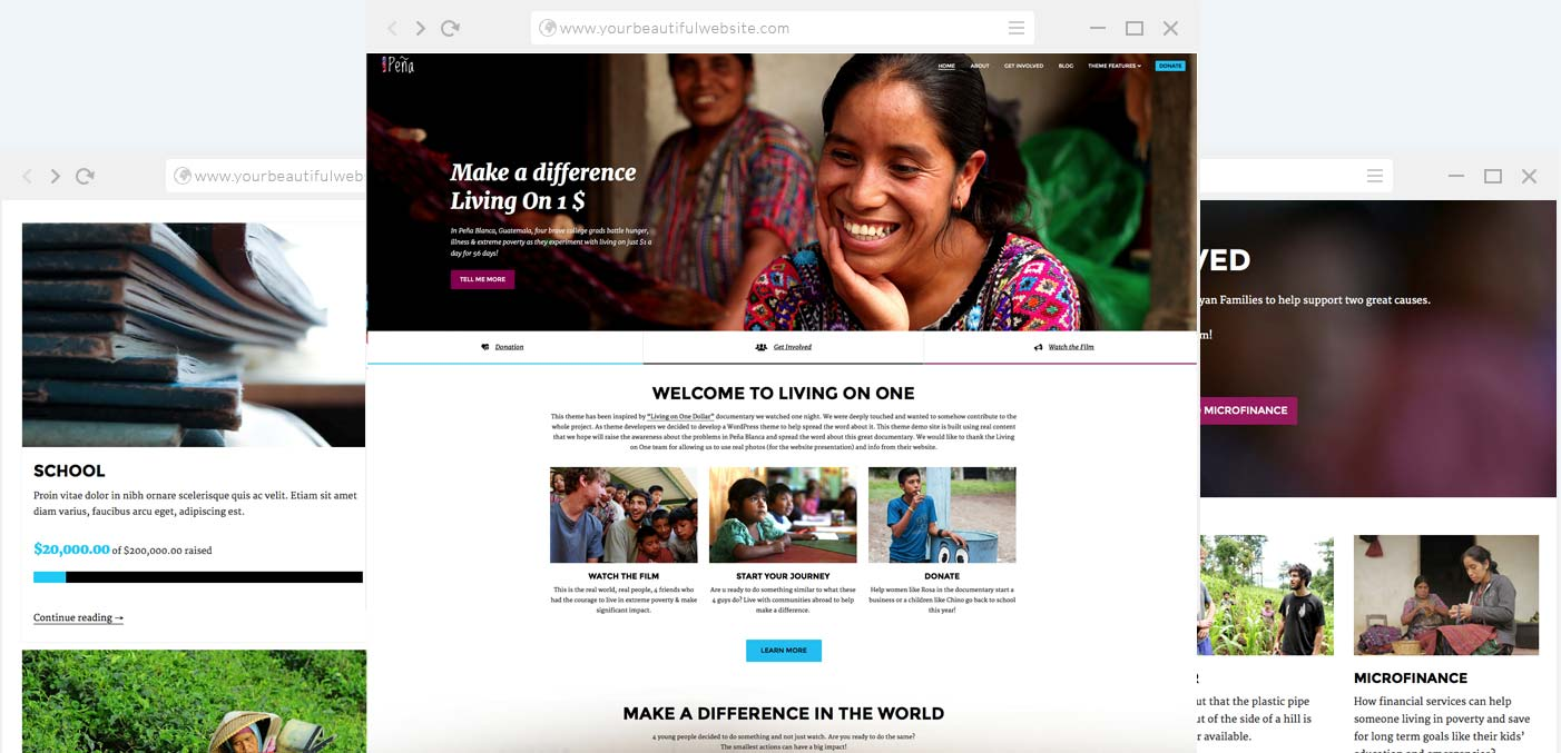 Charity WordPress Theme  Ngo Templates