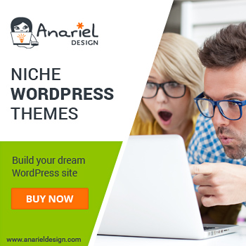 Niche WordPress Themes