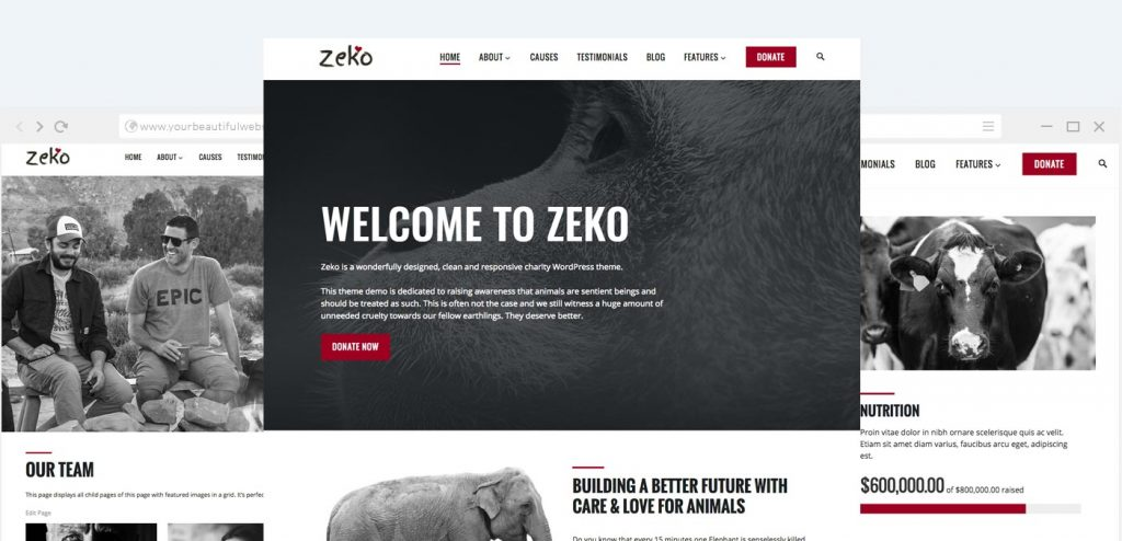 Zeko is our popular non profit WordPress theme.