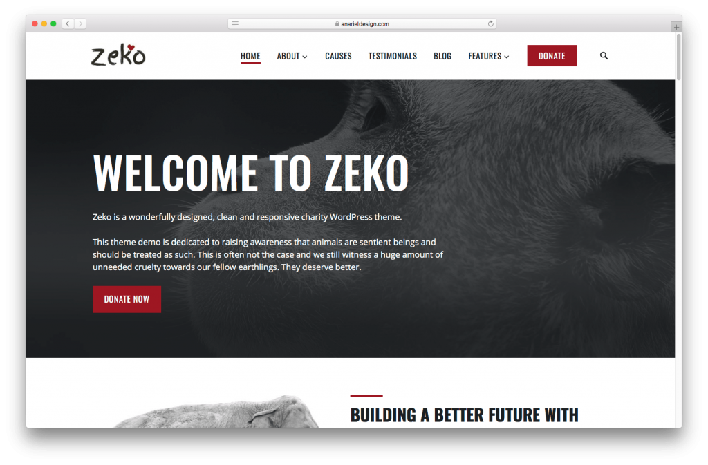 Zeko is our non profit WordPress theme.