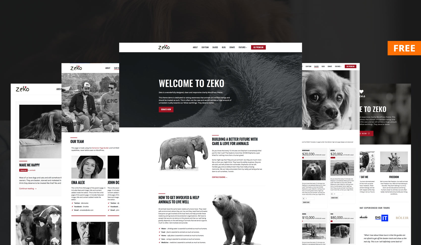 Free Non-Profit WordPress Theme