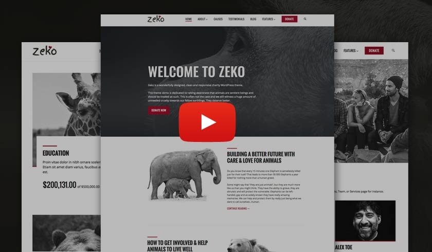 Video Guide: Zeko Charity WordPress Theme