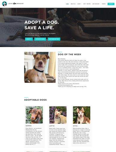 dog_rescue_homepage