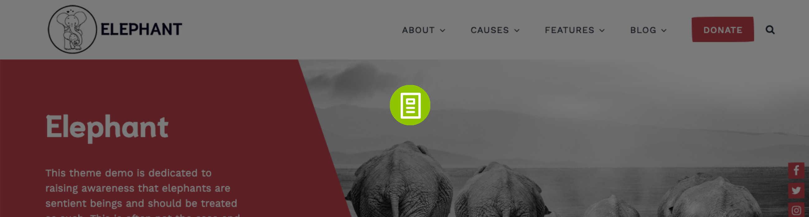 Elephant Documentation